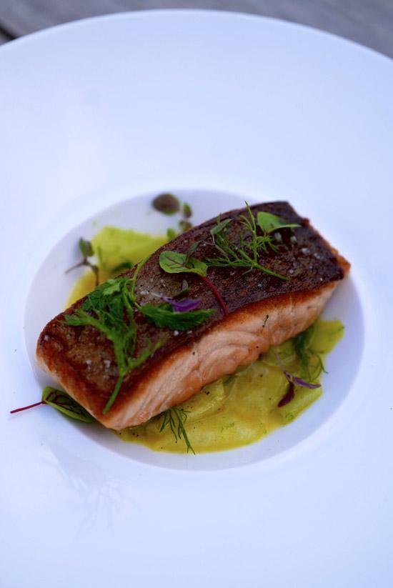 plat-saumon-restaurant-splash-asnieres-sur-seine-norbert-tarayres-BPP-bistrots